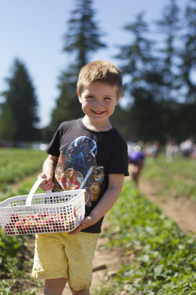 Krause berry farm carpe diem our way20150607_0019