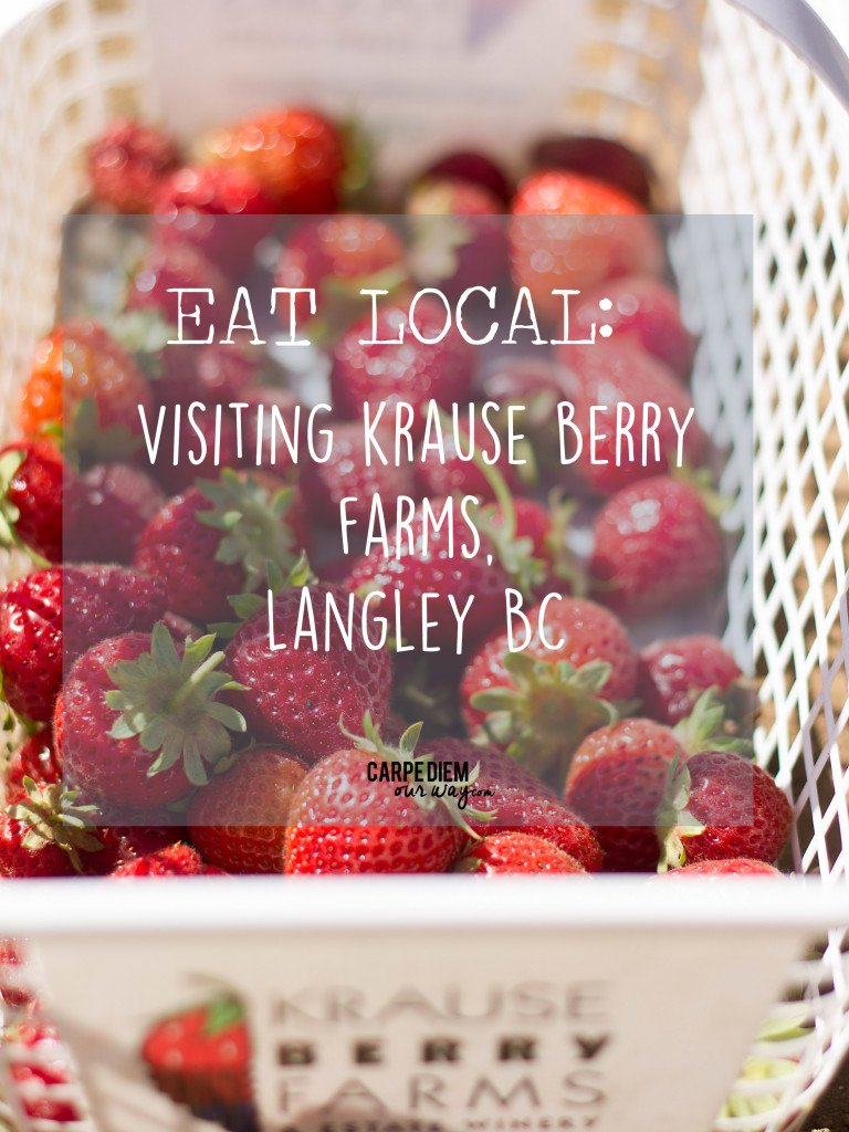 krause berry farms langley bc