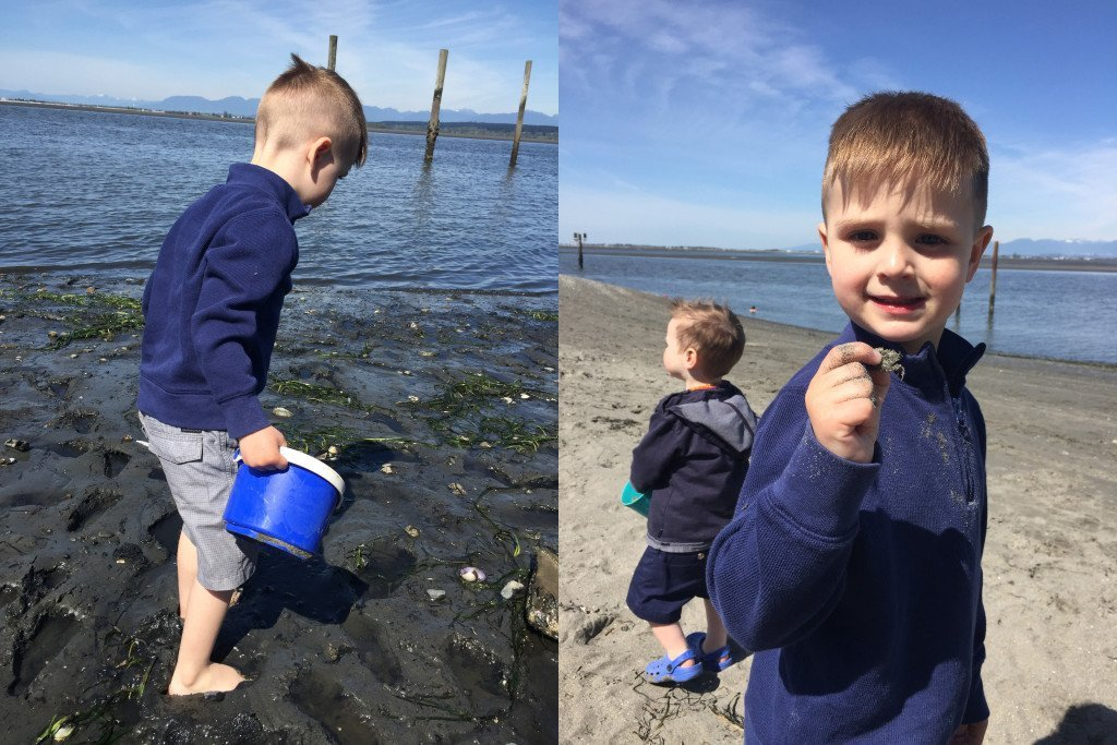 Crab Hunting at Crescent Beach, White Rock BC