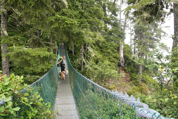Juan-de-Fuca-Trail-Suspension-Bridge