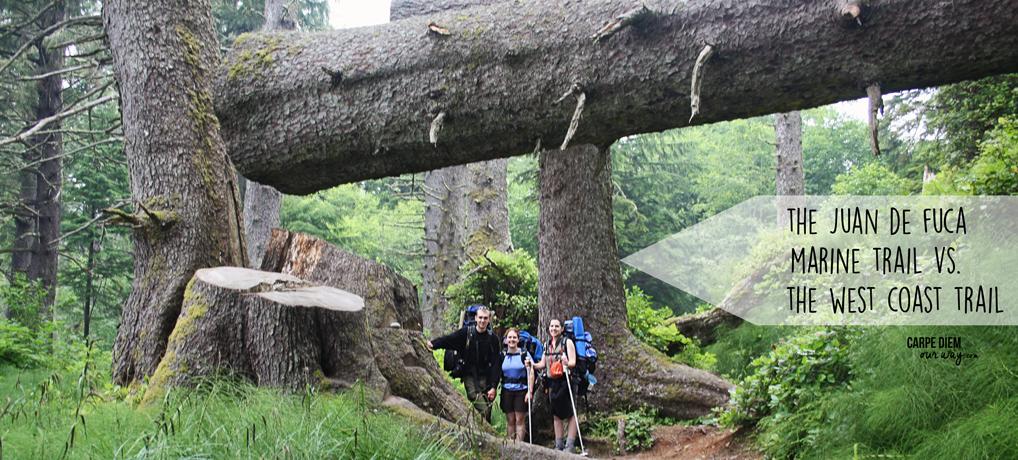 juan-de-fuca-marine-trail-giant-trees-carpe-diem-our-way