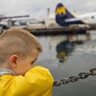 Orca Spirit Whale Watching Carpe Diem OUR Way Family Travel Blog 10