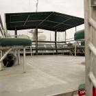 Orca Spirit Whale Watching Carpe Diem OUR Way Family Travel Blog 11