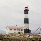 Orca Spirit Whale Watching Carpe Diem OUR Way Family Travel Blog 9