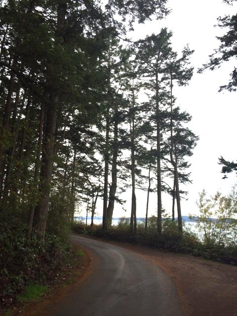 The Windy Road around Washington Park