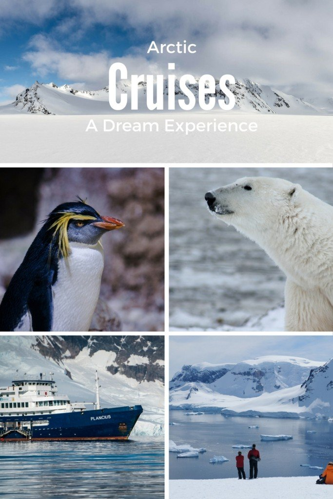 Arctic Cruises: A Dream Experience
