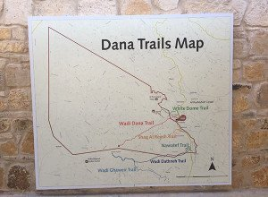 Dana Guest House Review15