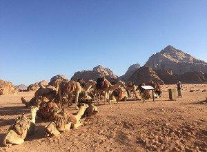 Hasan Zawaideh Camp Wadi Rum Jordan Review16