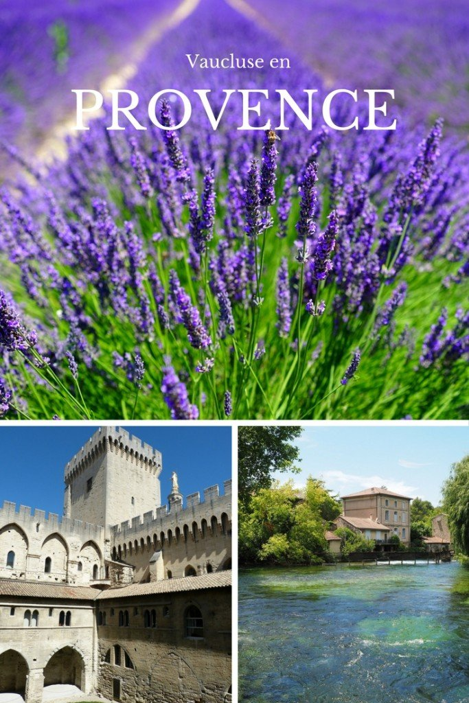 France For Kids Vaucluse en Provence