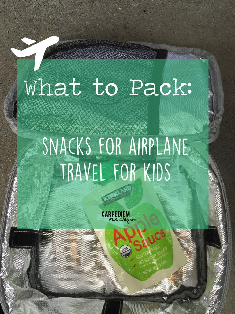 Airplane Snacks for Kids on a Plane | Long-Haul flight snacks | TSA Friendly Airplane Food Ideas for Toddlers and Preschoolers| Snacks for kids on a plane | Kid-Friendly Snacks for Airplanes | Plane Food for Kids |