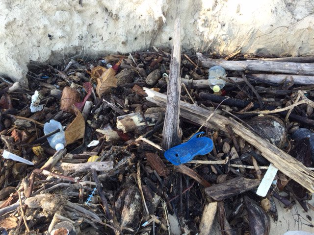Piles left from the tide include wood debris and trash