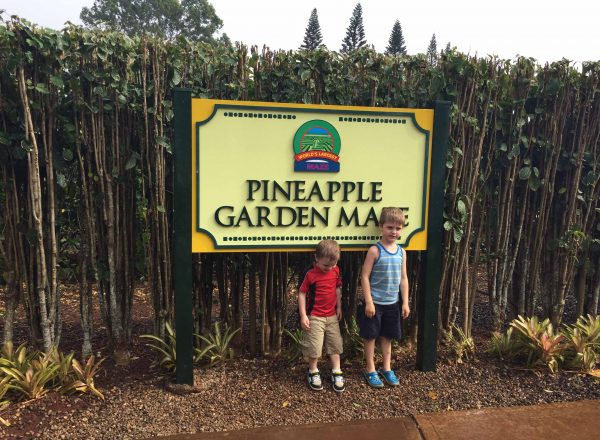 Things to do in Oahu with Kids: Even in the Rain the Boys ran off some energy at the Worlds Largest Maze