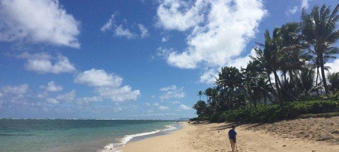 Whats New at Carpe Diem OUR Way and Hawaiian Recap!