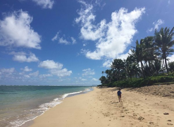 Wandering one of Oahu's Beautiful Beaches in Punaluu