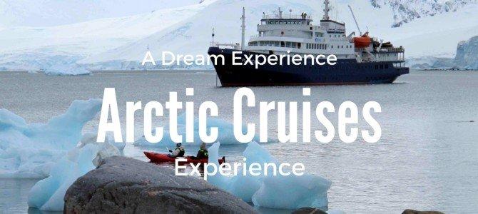 The Majestic Polar Bear Aboard an Arctic Cruise