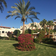 Movenpick Sharm El Sheikh Naama Bay25