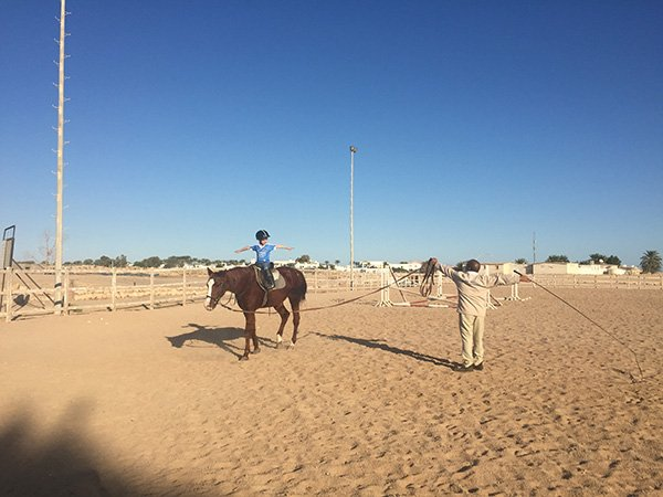 Riding Lessons at Movenpick Sharm el Sheikh