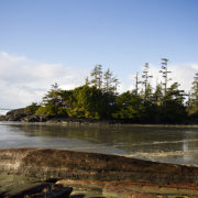 Tofino Family Travel Cox Bay Beach02