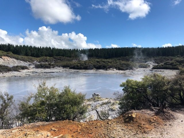 Hell's Gate Geothermal Pools and Spa, Rotorua New Zealand