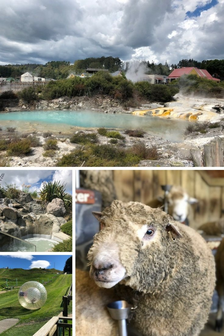 Rotorua New Zealand Attractions for the whole family | #newzealand #travel #rotorua #zorb