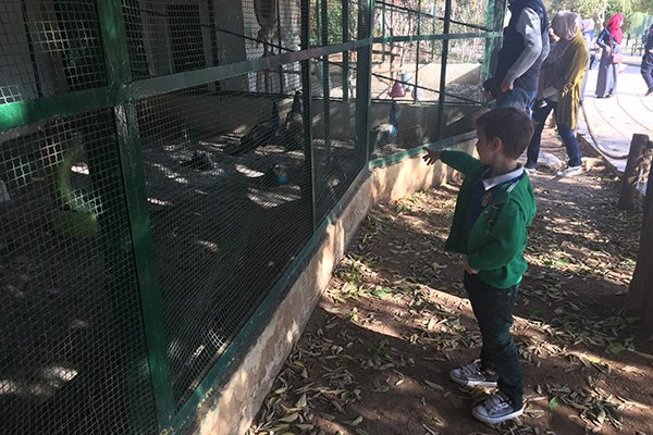 Popular parks in Amman - Bird Aviary Garden of Prince Hashem