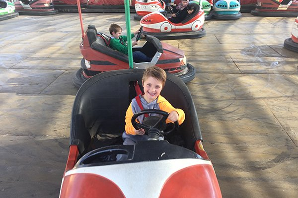 Amman for kids Zoo bumper cars