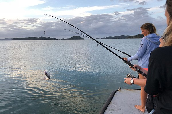 Fishing for dinner in the Bay of Islands, New Zealand