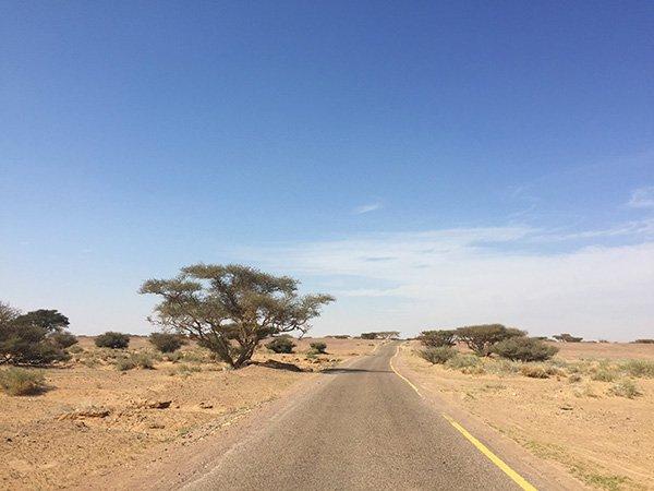 Driving in Dana Biosphere Reserve