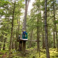 Whistler TreeTop Adventures Kids Course Review
