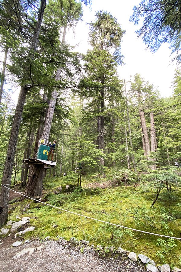 Ziplining Ropes Course Whistler