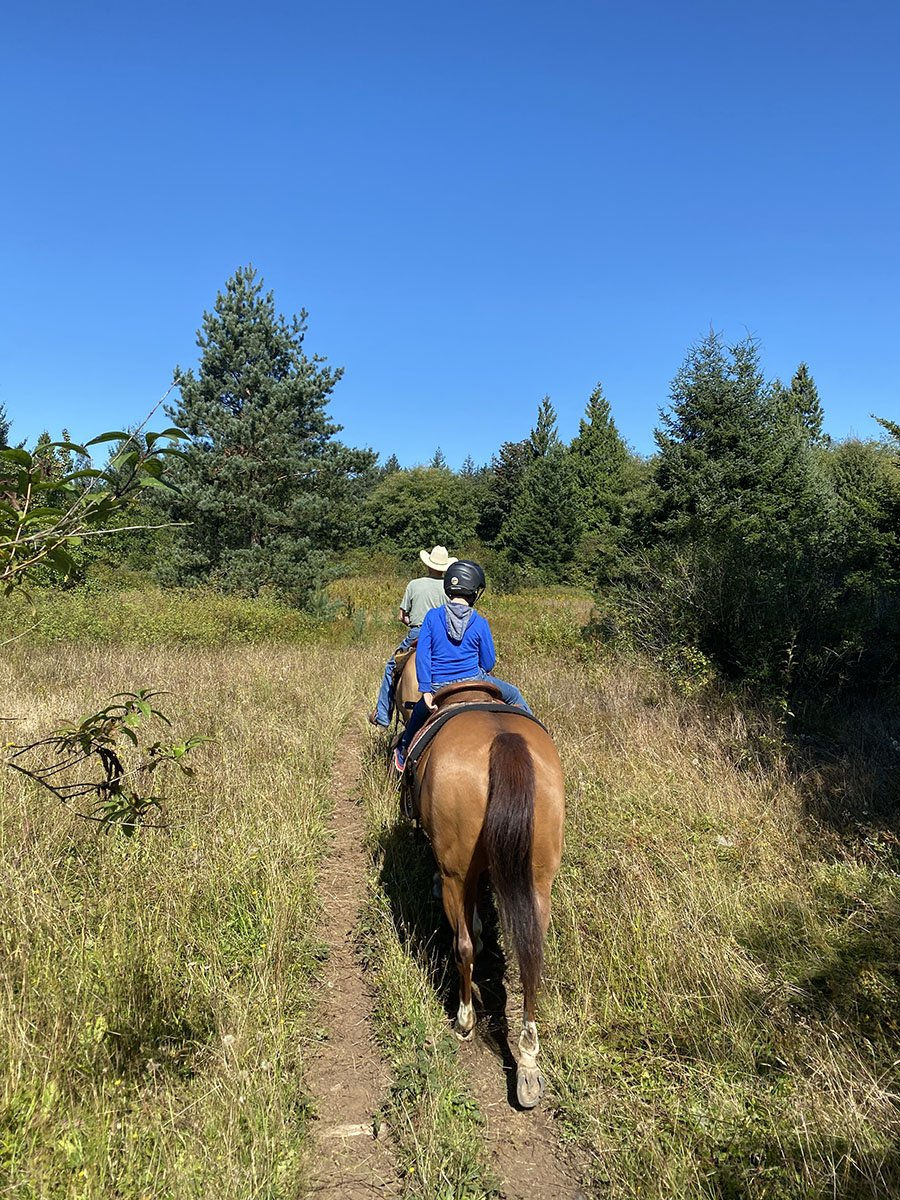 Horseback Riding Near Vancouver BC