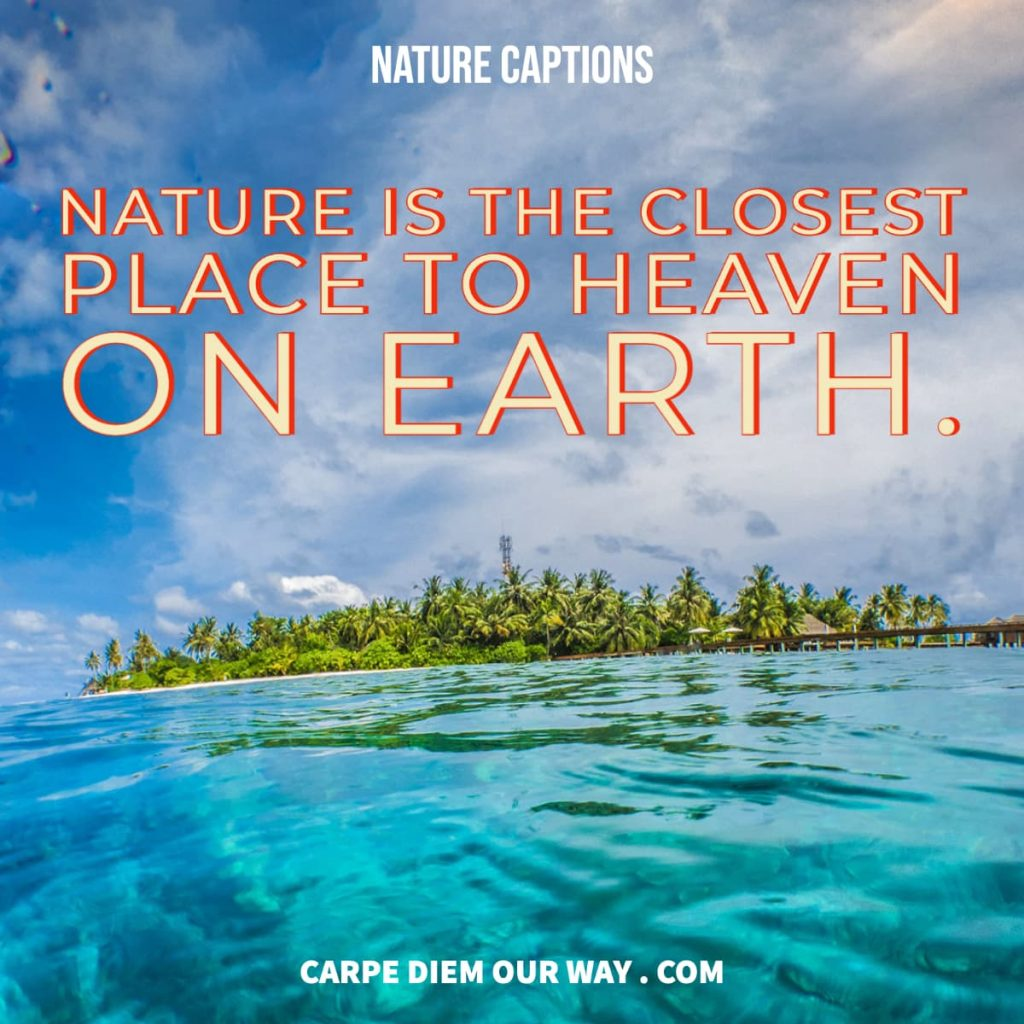 Nature is the closest place to Heaven on Earth.