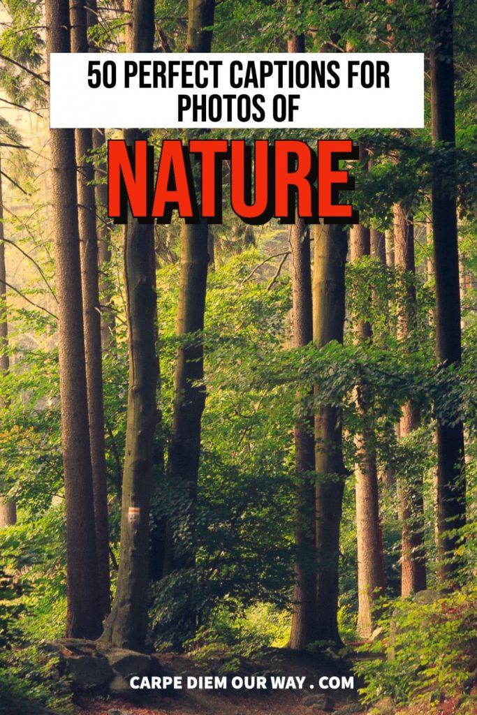 Nature ig caption.