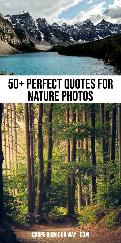 Nature quotes for Instagram.